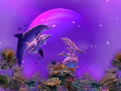 Un dauphin dans ANIMAUX 5qloh3dd